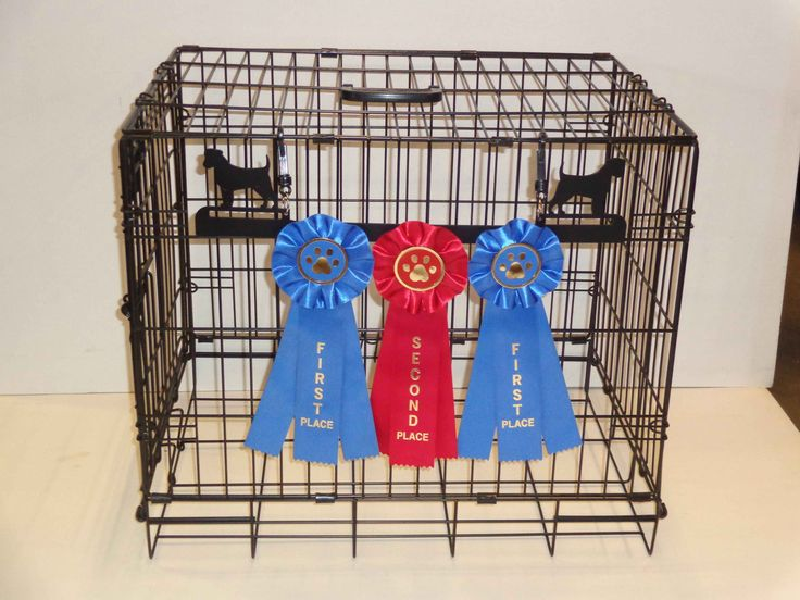 Showoff Ribbon Rack - Jack Russell Terrier