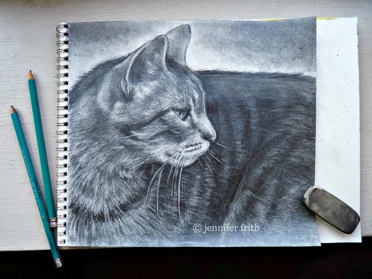 Chloe | pencil pet portrait