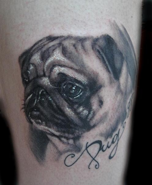 Gorgeous! Now this is what I want with my pug babies. Realistic portraits!!
