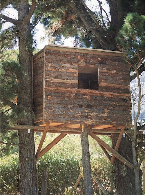 198 best images about backyard on pinterest above ground for How to make a fort out of wood