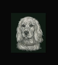 Cocker Spaniel -  This is the actual size of the scratch art. This size is intended as example of a memorial for an urn. Smaller work, like this, can easily be done for a pendant or jewellery. I can work from a photo. A web site dedicated to this is planned. In the mean time I can be contacted at sue@suewalters.com #cockerspaniel