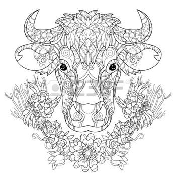 Coloring Pages Print Hand Drawn Doodle Outline Cow Head