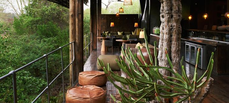 Euphorbias are famous in this region and they are right at home in Singita Sweni Lodge