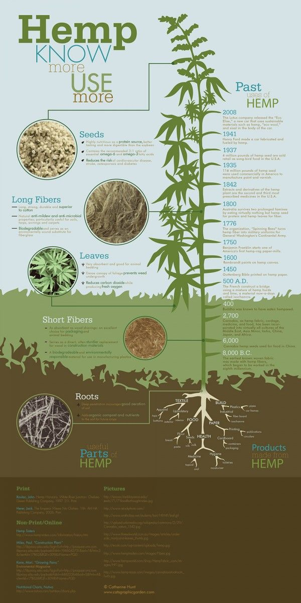 Hemp: The Wonder Plant? – Infographics