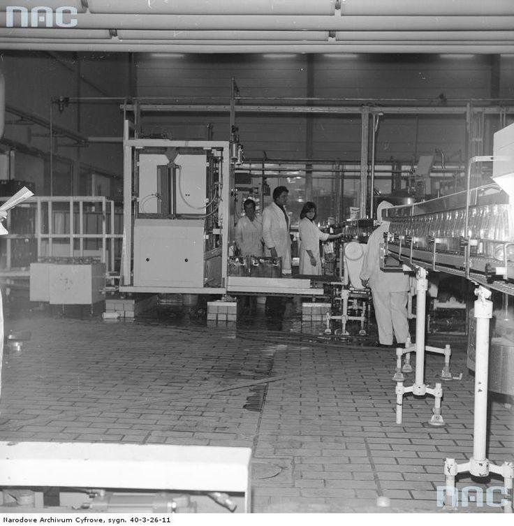 Hala fabryczna z linią produkcyjną do nalewania mleka w butelki.