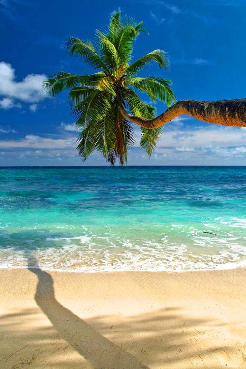 Beach Anse Takamaka on Mahe Island, Seychelles