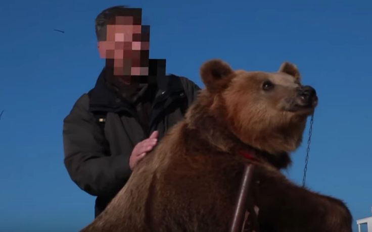 <p>Just when we thought people were finally starting to catch on to the idea the exploiting animals for a selfie was not cool … we came across this heartbreaking story of Jeta the bear. </p>