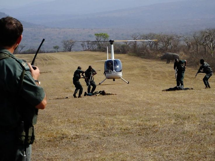 Rhino Poaching Simulation www.youthrhinosummit.com #wildlife #rhino