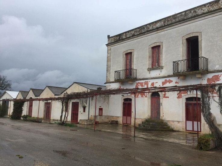 #ForSale - Tenuta, #Turi (Ba).   Contact us http://www.modernapulianstyle.com/  #LiveYourDream Build your home in #Puglia