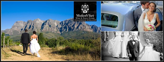 MolenVliet Wine and Guest Estate - Cape Town Wedding Venues