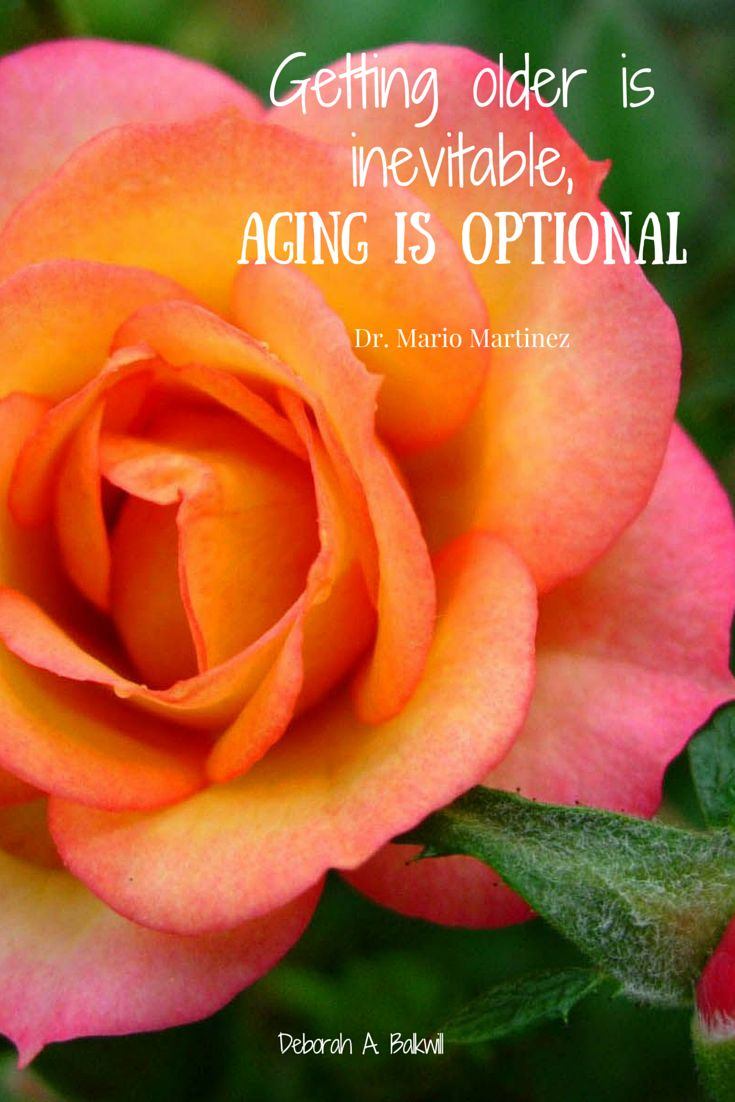 Age is Optional!!! http://bit.ly/1J2tYHD