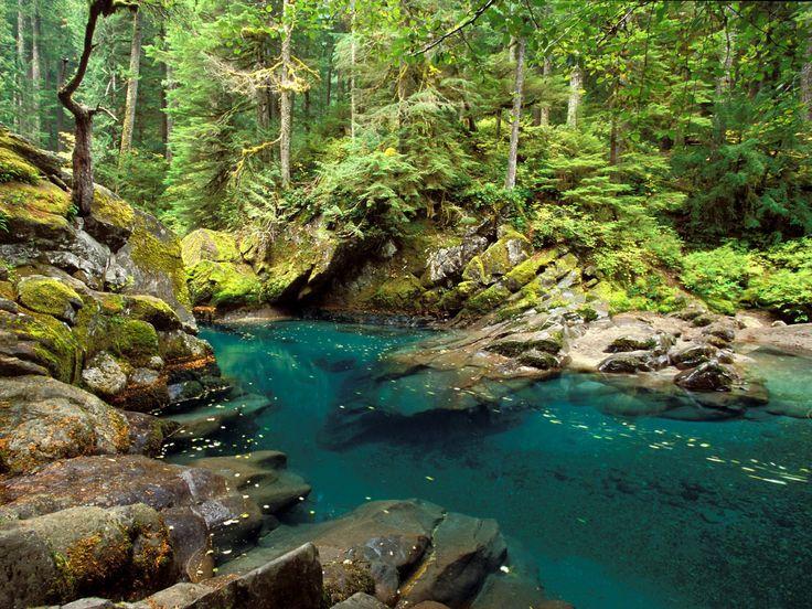 Five Idyllic Campsites in Washington State