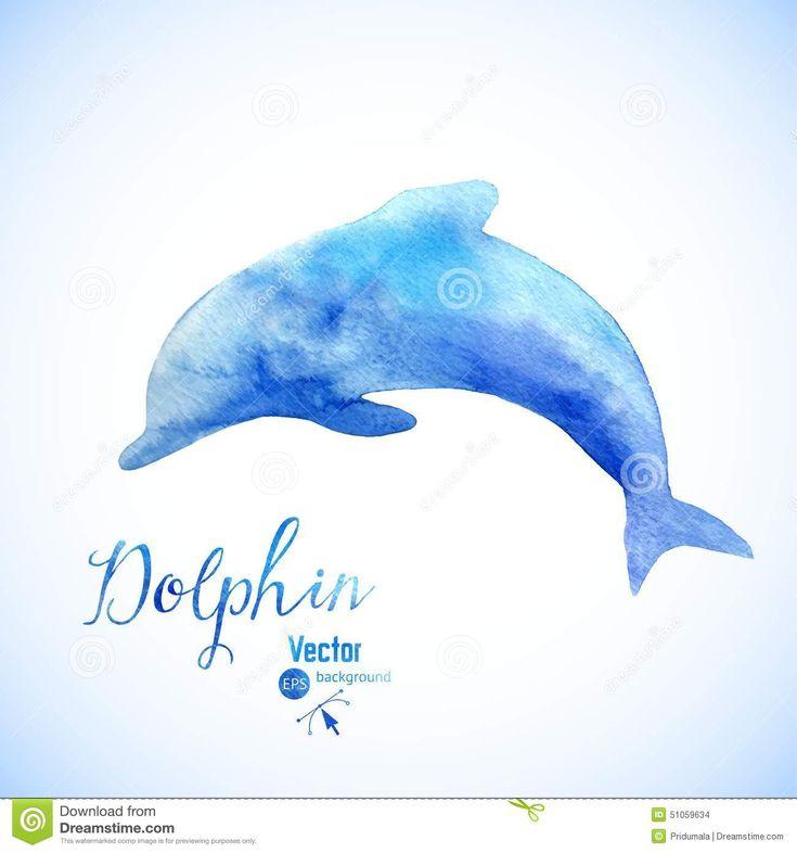 watercolor dolphin - Google pretraživanje