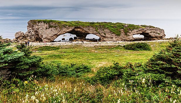The Arches Provincial Park, Newfoundland by Mike Organ
