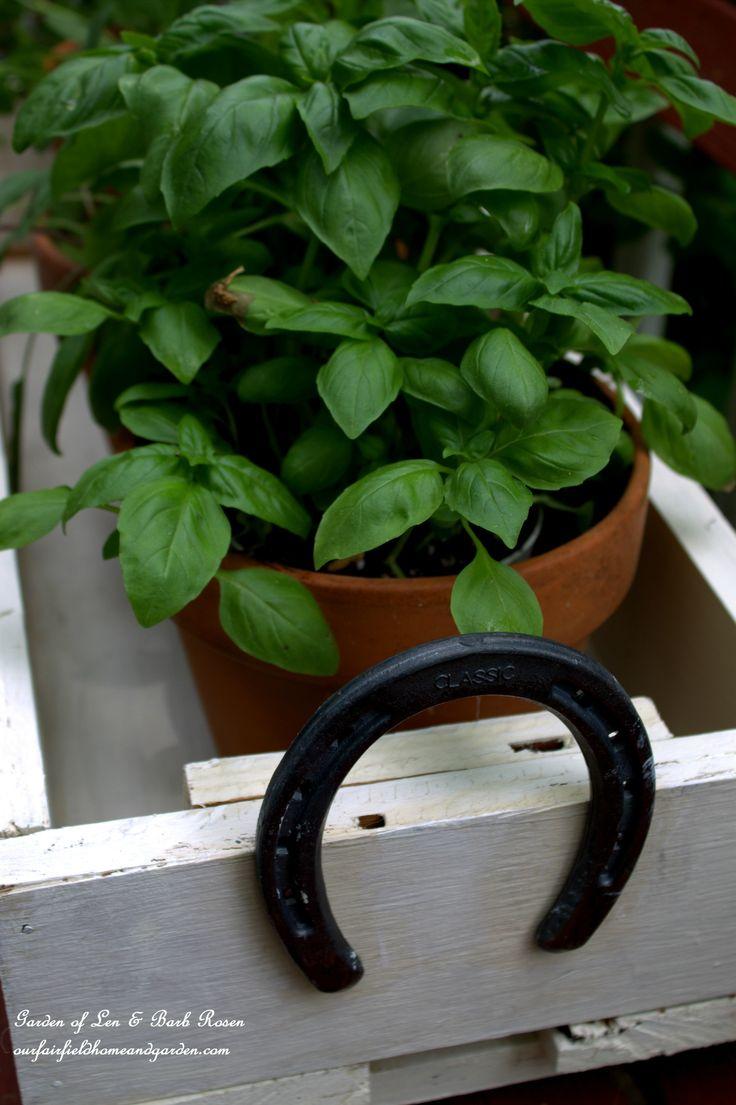 Horseshoe-Handled Herb Box   http://ourfairfieldhomeandgarden.com/horseshoe-handled-herb-box/