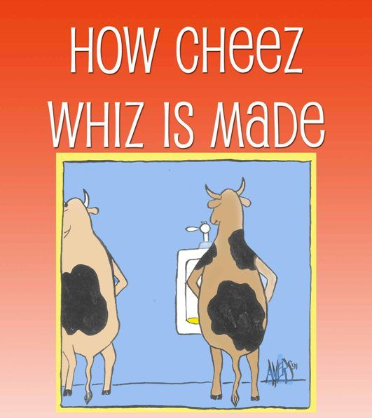 cheese wiz kid Kraft cheez whiz original cheese dip 15 oz jar  have hot pepper in it,  because i like to be able to control the heat myself, especially if i'm feeding it to a  kid.