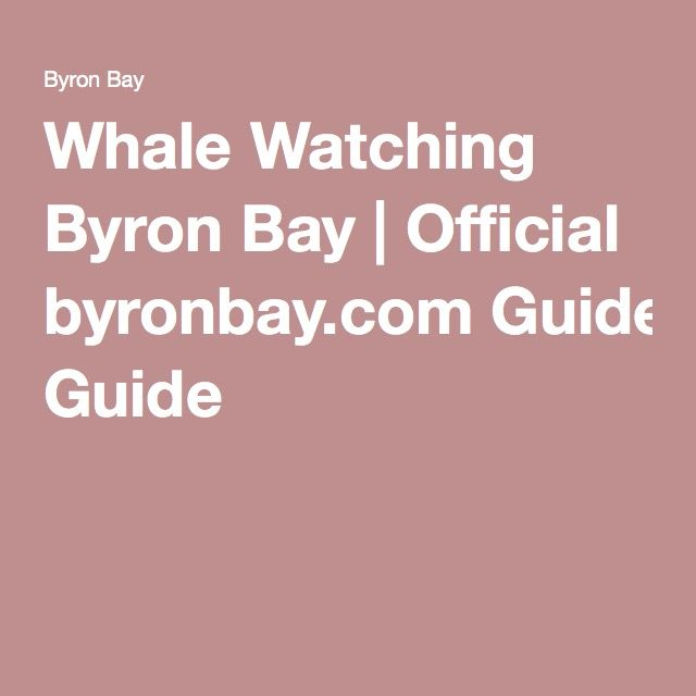 Whale Watching Byron Bay | Official byronbay.com Guide