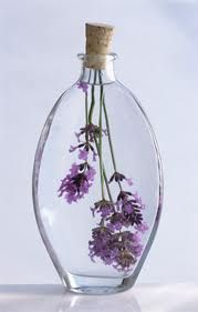 *~Lavender in oil