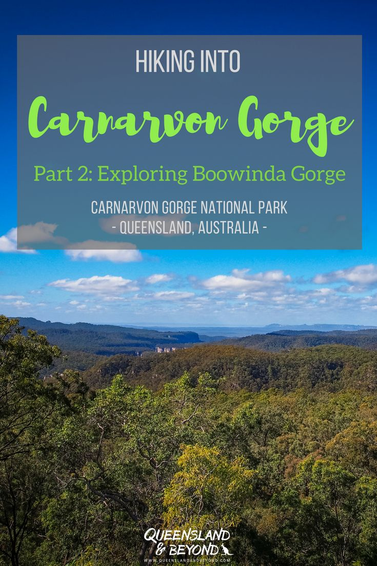 Carnarvon Gorge in Queensland's Outback is a spectacular sandstone gorge and is an amazing hiking destination. It's perfect for an easy overnight hike, especially if you want to explore Boowinda Gorge. Here's Part 2 of our hiking trip. 🌐 Queensland & Beyond #australia #carnarvongorge #nationalpark #hiking