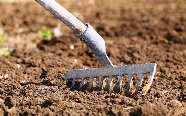 A Föld varàzslói: Tavaszi szántás