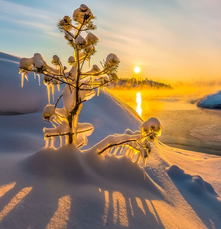 картинки доброе утро позитивные красочные природа зима того
