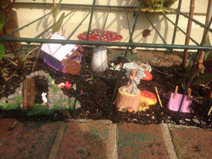 Our fairy garden coming along nicely.