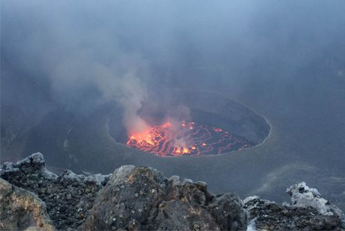 Uganda and Mount Nyiragongo: Gorillas, Chimps, Tree Climbing Lions, Wild Beauty and Bubbling Lava -  10 day trip