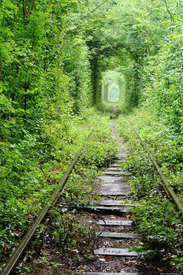 Tunnel of Love, Ukraine Measuring in at roughly 1.8 miles long, this tunnel sits deep in the forests of Ukraine.