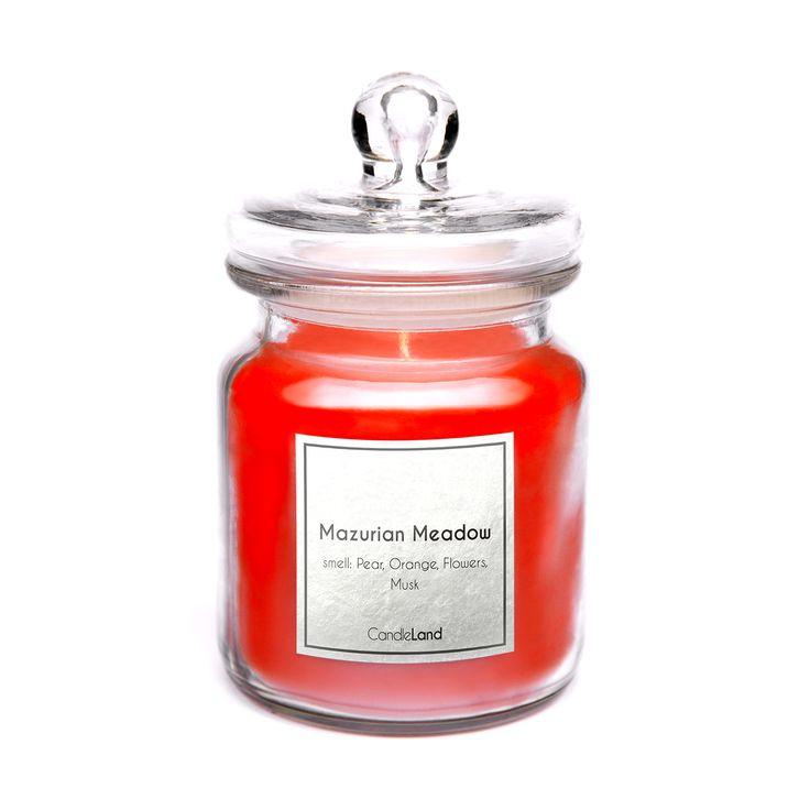 Świeca MAZURIAN MEADOW to nietuzinkowe połączenie polnych kwiatów z gruszą i mchem leśnym.   https://candleland.pl/pl/home/23-swieca-zapachowa-mazurian-meadow.html #candle #relaks