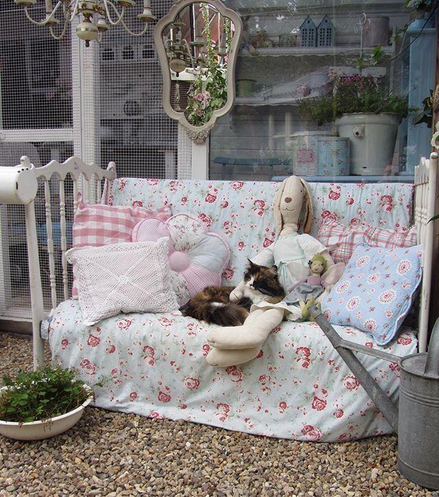 Guten Morgen ihr Lieben  Ich bin schon im Garten am wuseln und Hermine guckt mir zu  Mmmh... das Wetter ist heute ja nicht sooo schön...☁️☁️☁️ nützt nix, ich will heute was schaffen  Tschüüüüßiii....genießt den Samstag.... ich tauch dann mal wieder in den Büschen ab...bis nachher