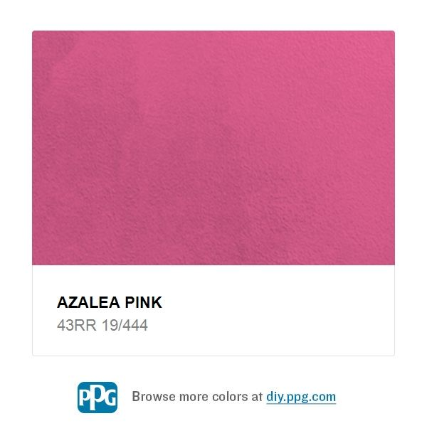Explore Paint Color Azalea Pink By Ppg Timeless Available At The Home Depot A Very Hot Can Be Used As An Accent In Bedroom