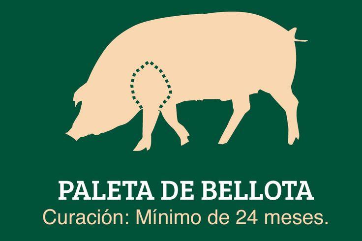 Ibérica de Bellota