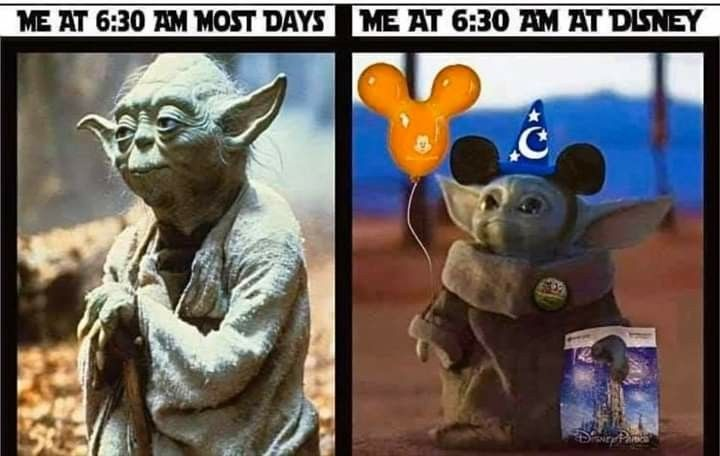 Pin By Kylee Timmreck On May The Force Be With You Disney Memes Yoda Meme Funny Disney Memes