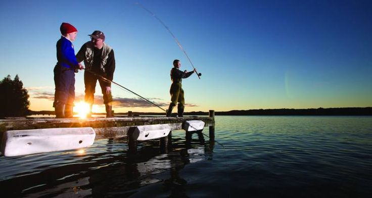 Memorable activities to be had with Dad in New Zealand