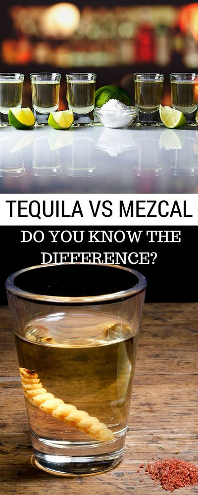 Tequila V's Mezcal - The lessons of a tasting - What you need to know! Most people think Tequila has the worm in the bottle...