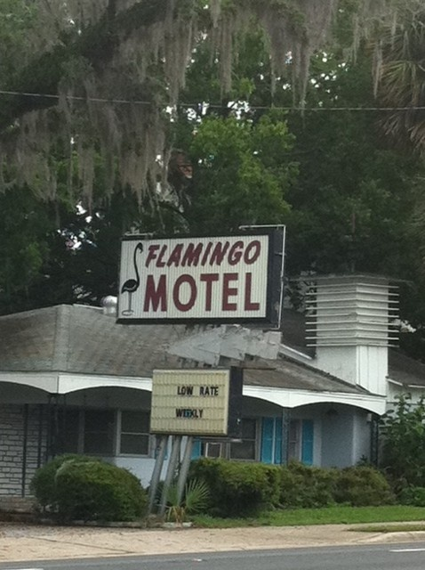 Flamingo Motel Ocala Fl