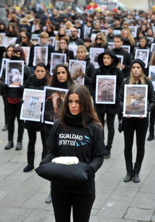Madrid : en noir pour défendre les droits des animL'association internationale  «Igualdad Animal»/«Animal Equity» qui organisait le défilé sur la place de la Puerta del Sol, dans la capitale espagnole, milite pour le respect à l'égard des animaux et refuse de les considérer comme de simples objets.