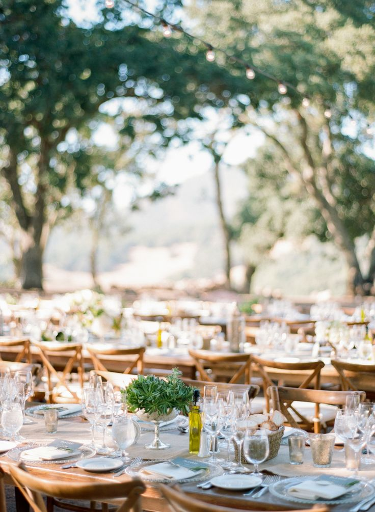 Event Planning: Cole Drake Events - http://www.stylemepretty.com/portfolio/cole-drake-events Floral Design: M Design - http://www.stylemepretty.com/portfolio/m-design Venue: Kunde Vineyards - http://www.stylemepretty.com/portfolio/kunde-vineyards   Read More on SMP: http://www.stylemepretty.com/2016/02/11/sonoma-vallery-wedding-at-kunde-family-winery/