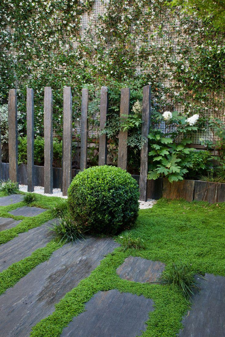 plantes nouveau jardin