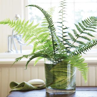 Think outside the flowers! A beautiful arrangement can be as simple and inexpensive as springtime fern leafs from our property. #goodhousekeeping #happyroom