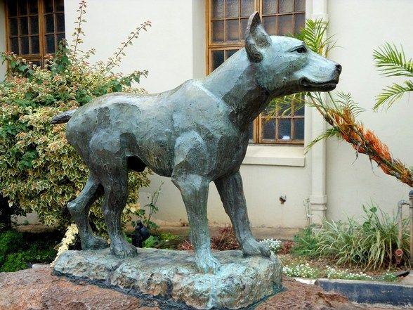 Jock of the Bushveld statue. (Side View) Photo by Caroline Street.