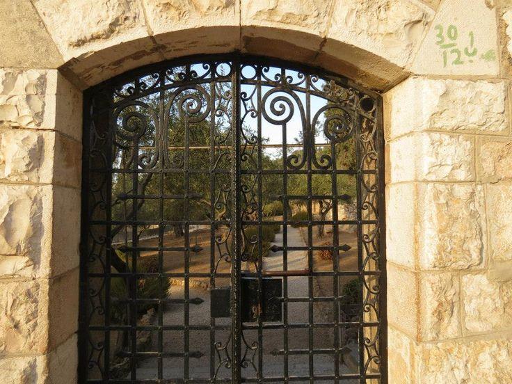 ISRAEL IERUSALIM JERUSALEM GHETSIMANI GARDEN GRADINA GHETSIMANI