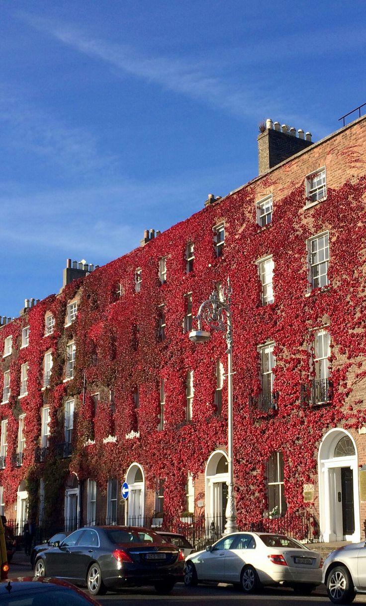 Fitzwilliam Sq. West, Dublin
