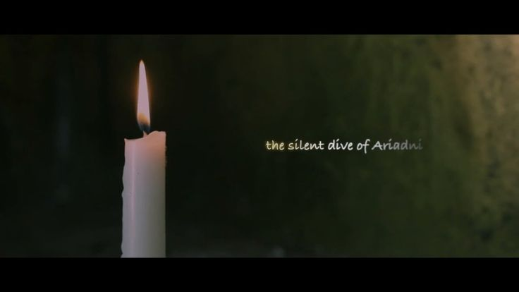 The silent dive