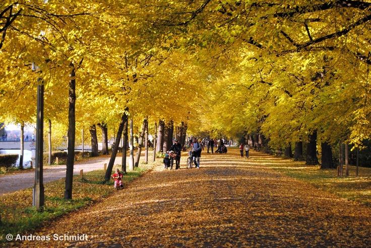 An autmn walk in the Clara-Zetkin-Park in Leipzig © Andreas Schmidt