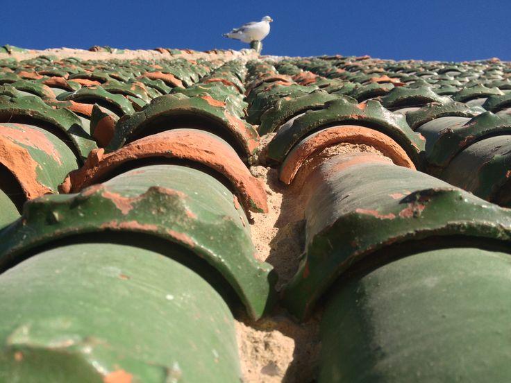 Essaouira - Maroc. © Copyright Yves Philippe