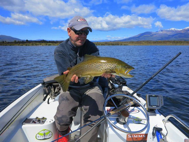 A lovely Brown #trout landed on opening day 1 October 2013.