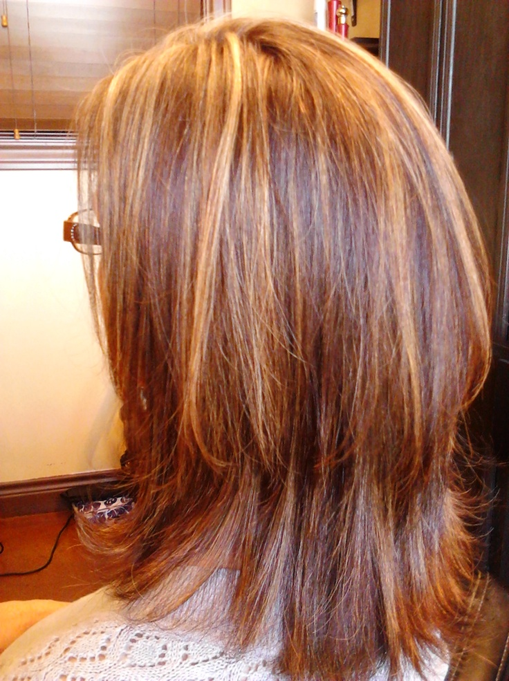 New Hairstyle 2014 Medium Golden Brown Hair Color With Highlights