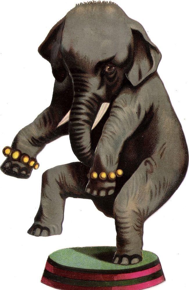 Oblaten Glanzbild scrap diecut chromo Zirkus Elefant  18,3cm elephant circus XL: