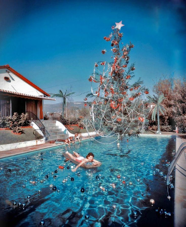11 best Pool Christmas cards images on Pinterest ...